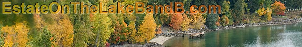 Banner- Fall Colors of Shoreline